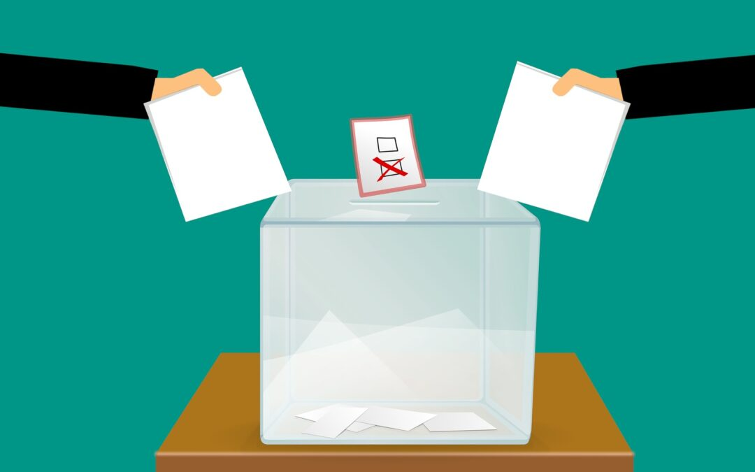 Misinformation and elections: what is at stake?